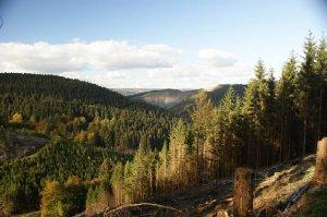 Steinbruch im Sauerland