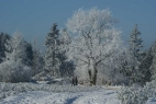 4. Sauerland Winter